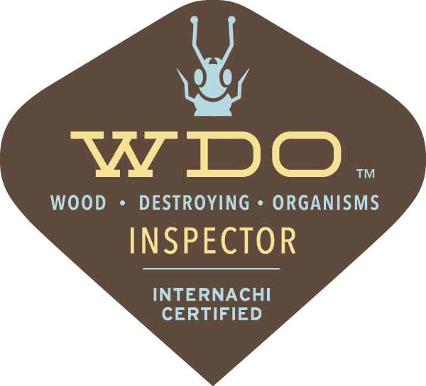 WDI Termite Inspection Dallas Fort Worth