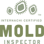 Mold Inspection Dallas