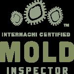 Mold Inspection Dallas
