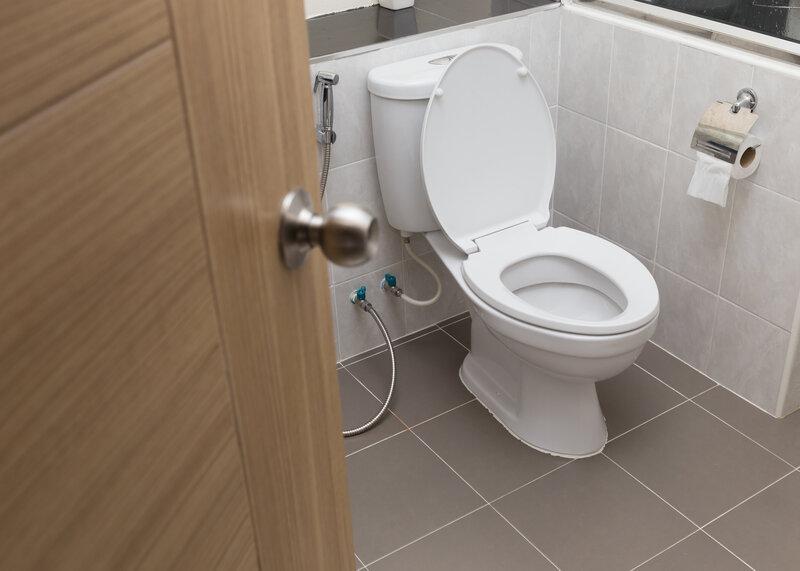 Toilet Inspection Southlake